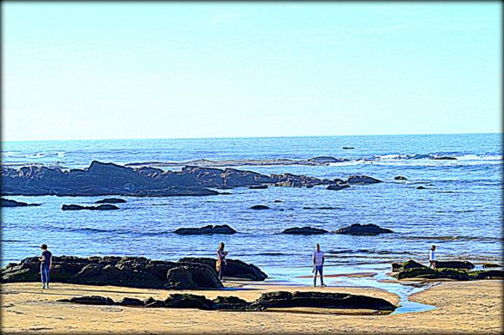 Flyschs en la playa de Motrico