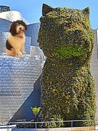 Puppy y Boj