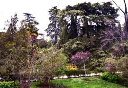 jardín romántico de la Fuente del Berro